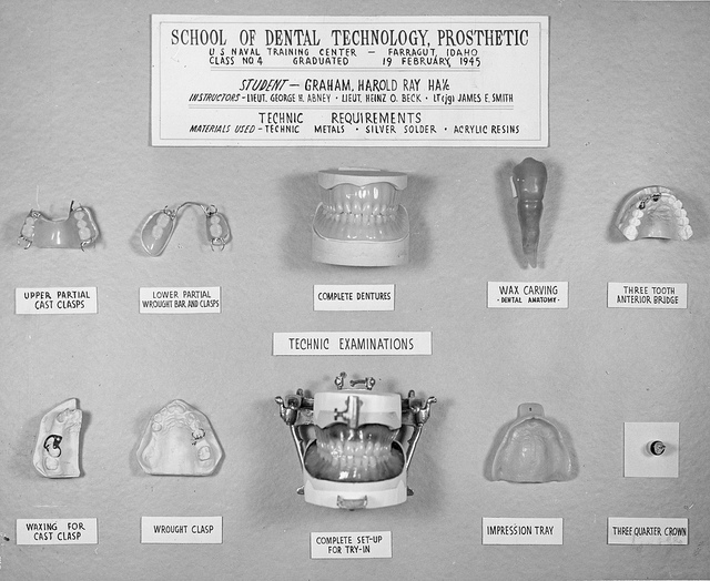"These prosthetics were created by students at the School of Dental Technology, Naval Training Center, Farragut, ID in 1945. Among the pieces shown here are wax carvings. ""09-8018-3"" by Navy Medicine. Public Domain."