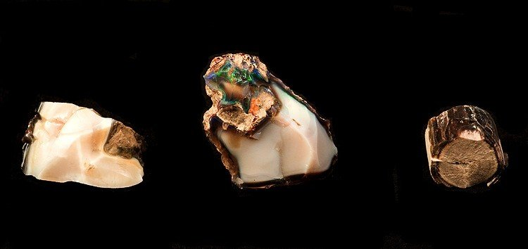 "Three pieces of opal from Virgin Valley, Nevada. ""Opal."" © Rob Lavinsky, www.iRocks.com. Used with permission."