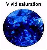 Vivid Saturation