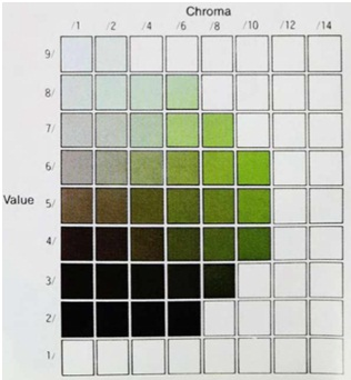 Figure 4. Munsell value and chroma for hue 5G. (From Precise Color Communication: Color Control from Feeling to Instrumentation, p.17; courtesy of Minolta Camera Company, Ltd. Japan.)