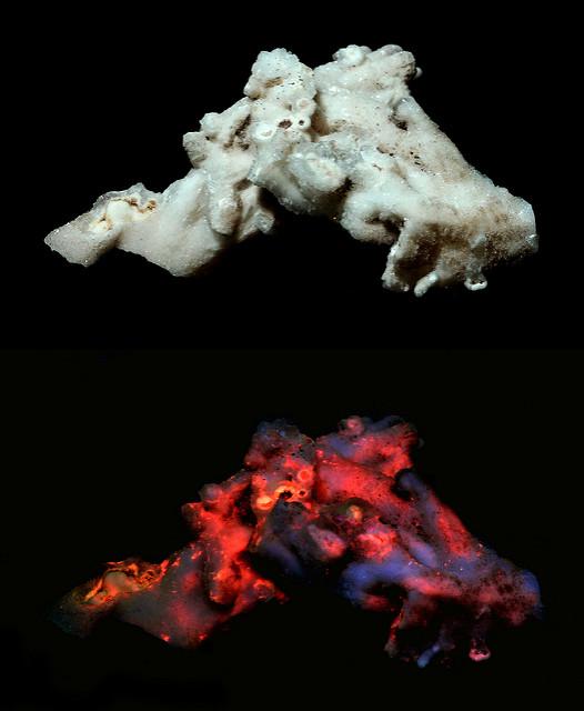 aragonite - fluorescence