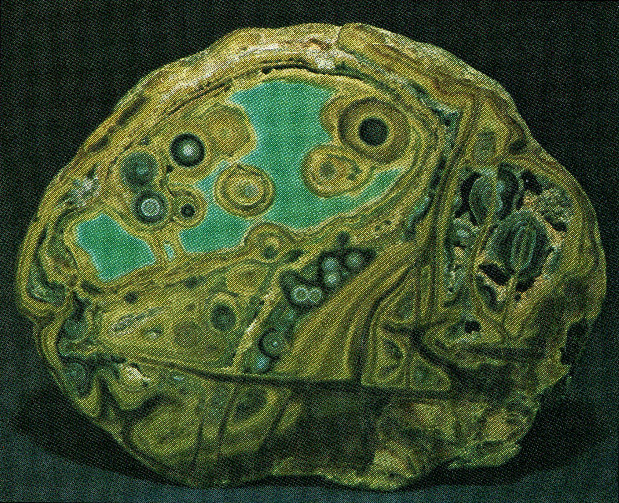 Variscite slab - Utah