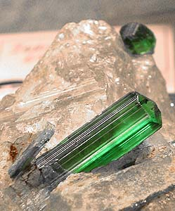 Green petrified wood