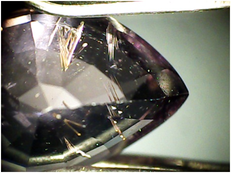 spinel, 20X - multipurpose microscope stage