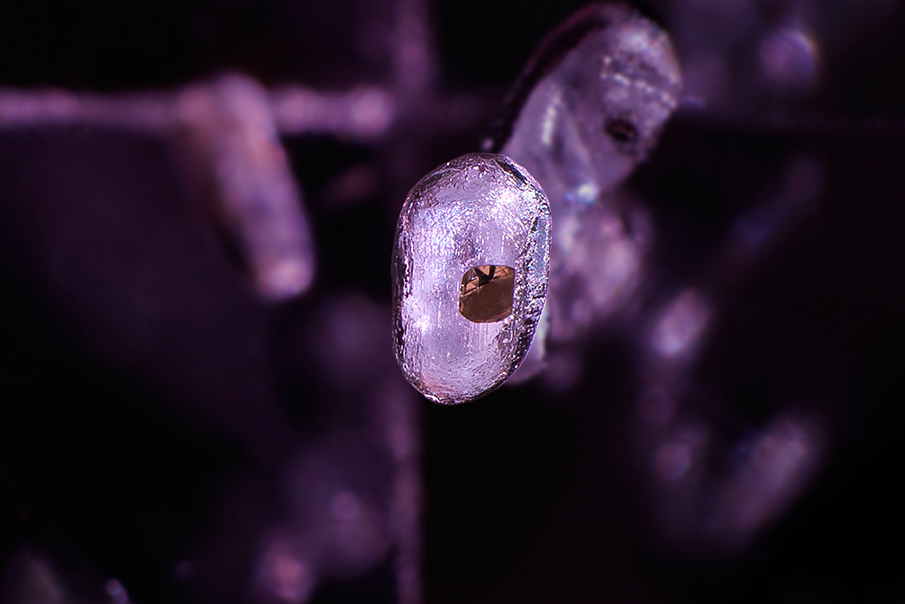 gemstone photomicrography - apatite in spinel