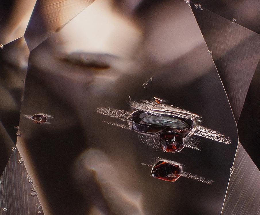 gemstone photomicrography
