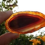 gemstone transparency - carnelian