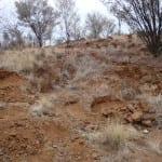 DSC03022-Sunny-Masons-latice-feldspar-location