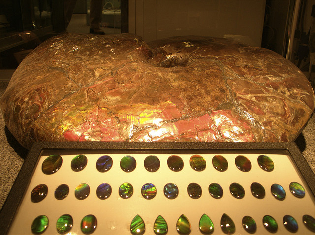 gemstone doublets - ammolites