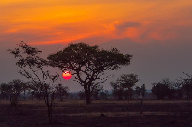 """Serengeti Sunset,"" Serengeti National Park, by Anita Ritenour is licensed under CC By 2.0"
