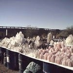These crystals on display at one of the Quartzsite gem shows were visible from the road.
