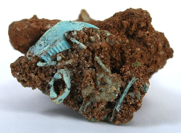 turquoise pseudomorph after fossil bone - Nevada