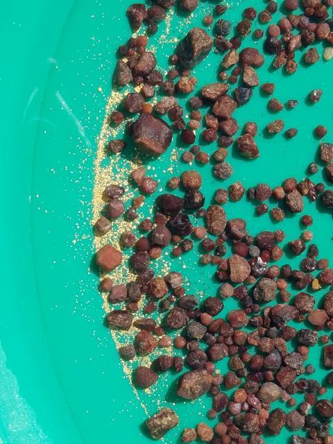 Colorado gemstones - Garnets and gold