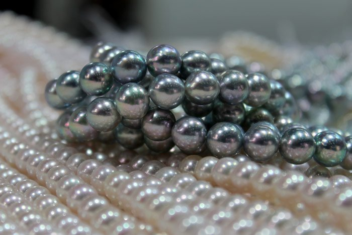White and blue Akoya pearls