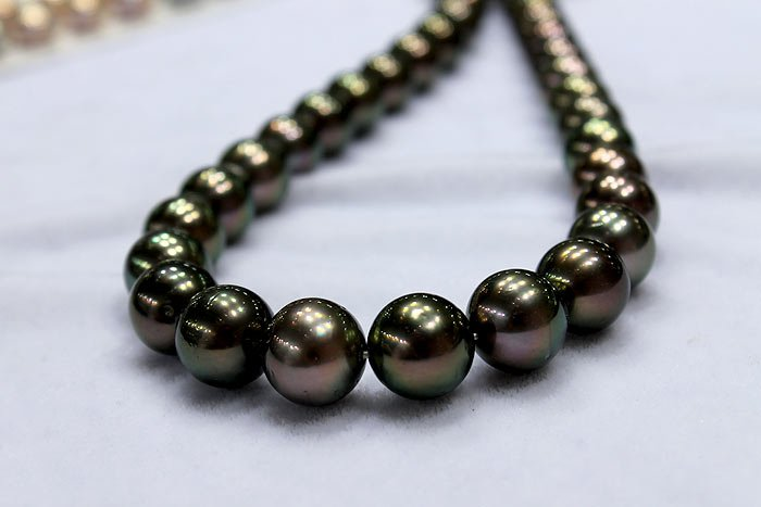 Tahitian peacock pearls