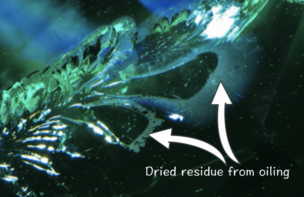 Dried residues left after removing oil from surface-reaching fissures in an emerald